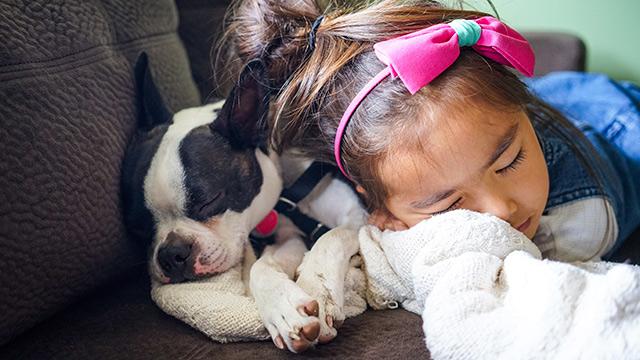 Jente sover med hund